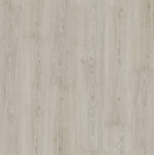 Perfect Grey Oak - JOKA Designboden 555 Click